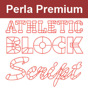 Perla Premium Digitizing Lesson