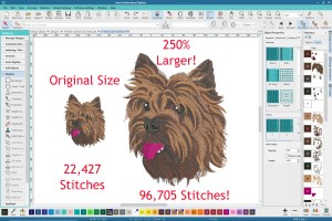 Resizing embroidery designs